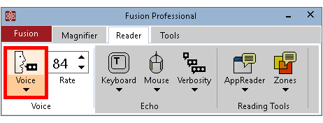 Voice button shown on the Fusion Reader tab